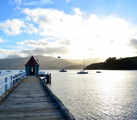 new-zealand-miss-foodie28