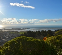 new-zealand-miss-foodie32