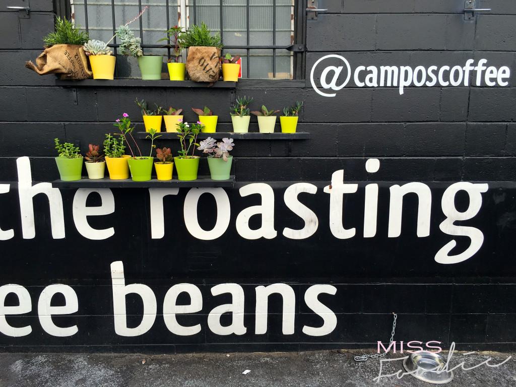 Campos - Miss Foodie-5
