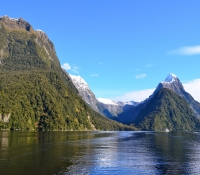 new-zealand-miss-foodie12
