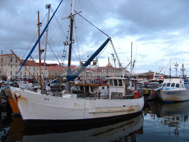 tas-trawler-boat-marina-in-hobart