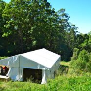 Noosa International Food and Wine Festival – Strings and Straw